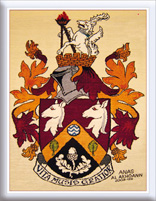 The Haslemere Coat of Arms Weaving.jpg