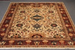 New Jamila carpet